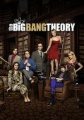 The Big Bang Theory Saison 8